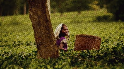 The Tea Tribes of Assam